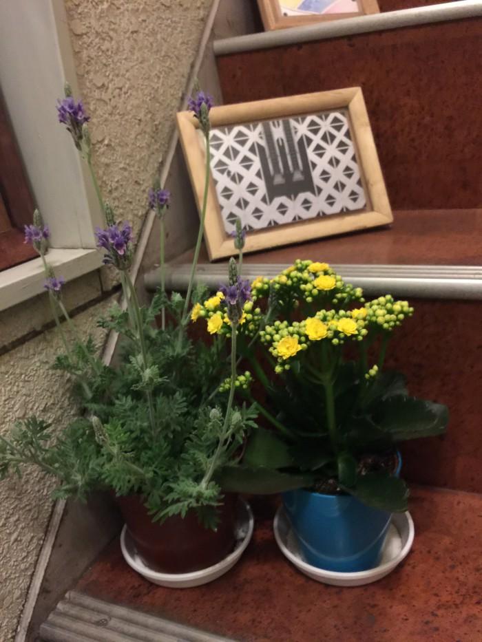 お花を飾る。